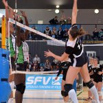 SFV: El Feel y Voley Playa se salen